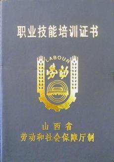 职业技能培训证书(劳动保障)